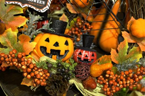 11月3日 文化の日はお休みさせていただきます。