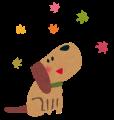 kouyou_dog